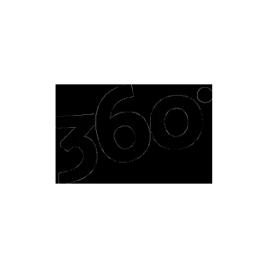 Logo Site 360