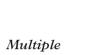 300x195_multiple